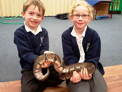 Zoo2U at Primary School with snake